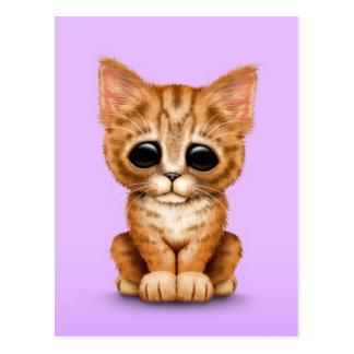Sad Cute Orange Tabby Kitten Cat on Purple Postcard