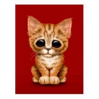 Sad Cute Orange Tabby Kitten Cat on Red Postcard