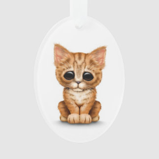 Sad Cute Orange Tabby Kitten Cat on White Ornament
