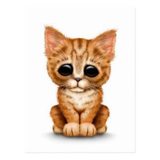 Sad Cute Orange Tabby Kitten Cat on White Postcard