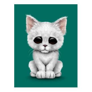 Sad Cute White Kitten Cat on Teal Blue Postcard