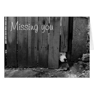 Sad Dog Card