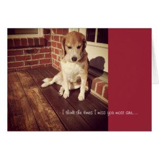 Sad dog missing you card