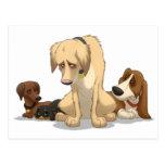 Sad Dogs Postcard