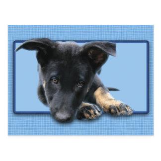 Sad Eyed Pup Postcard