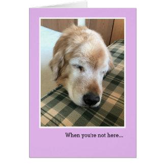 Sad Golden Retriever With Head on Chair Miss You Card