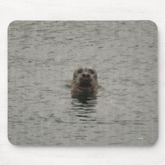 Sad Harbour Seal in the Rain Wildlife Art Mouse Pad