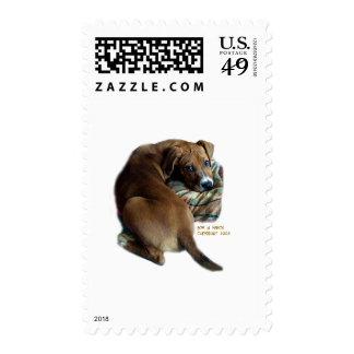Sad Hound Dog Postage