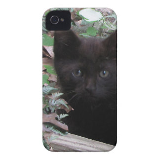 Sad Kitten Garden iPhone 4 Cover