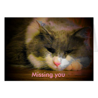 Sad Kitty is Missing You Greeting Card