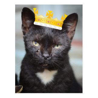 sad little Prince Kittie Postcard