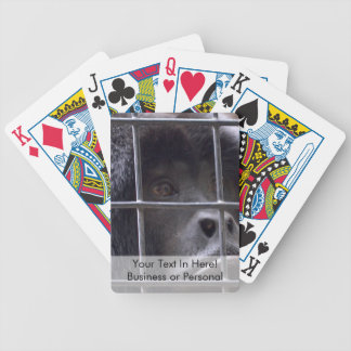 sad monkey in cage primate image bicycle playing cards