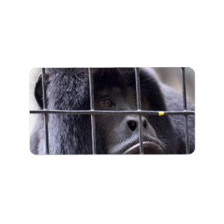 sad monkey in cage primate image labels