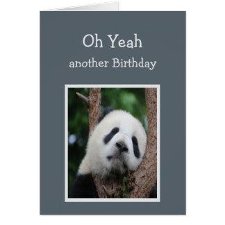 Sad Panda Bear Birthday Humor Card