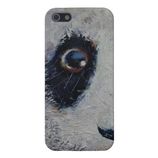 Sad Panda Case For iPhone SE/5/5s