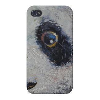 Sad Panda iPhone 4/4S Case