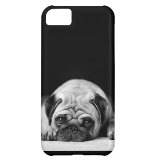 Sad Pug Cover For iPhone 5C