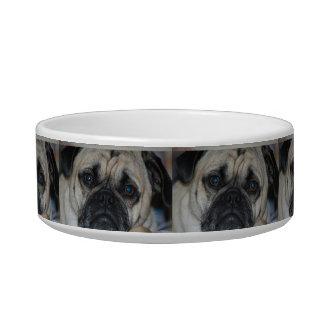 Sad Pug Dog Bowl