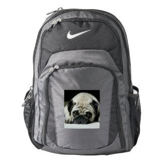 Sad pug - dog lying down - dog look - cute puppies backpack