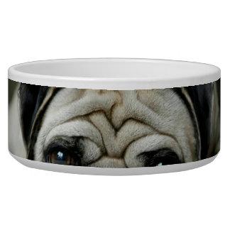 Sad pug - dog lying down - dog look - cute puppies bowl
