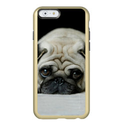 Incipio Feather® Shine iPhone 6 Case with Pug Phone Cases design