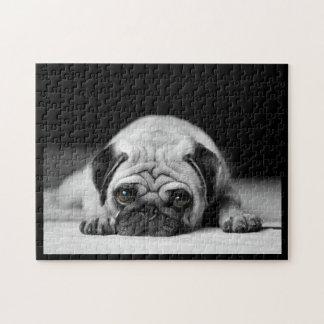 Sad Pug Puzzles