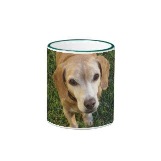 Sad puppy dog eyes ringer mug