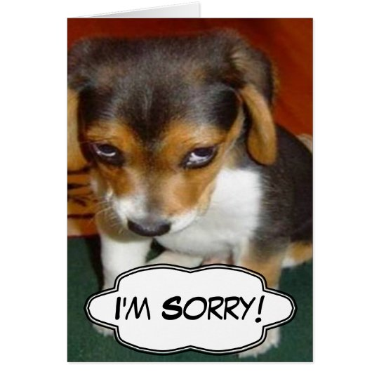 Sad Puppy - I'm Sorry Card