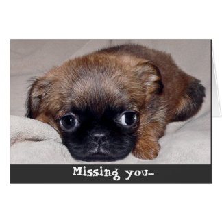 Sad Puppy! Missing You Card!