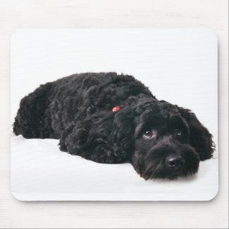 Sad puppy mousepad