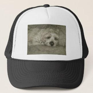 Sad sleepy dog trucker hat