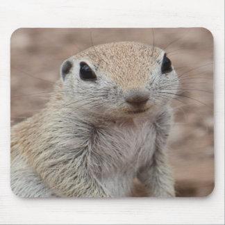 Sad Squirrel Mousepad