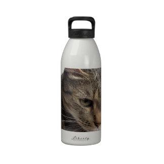 Sad tabby cat water bottle