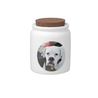 Sad White Boxer Candy Dish