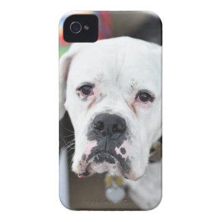 Sad White Boxer Case-Mate iPhone 4 Case