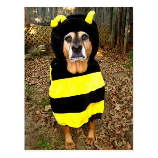 Saddest Bee Postcard