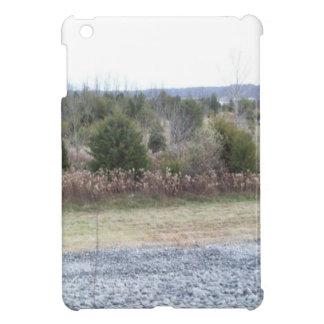 Saddle Dam View Cover For The iPad Mini