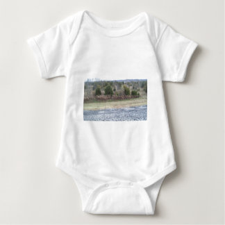 Saddle Dam View Shirt