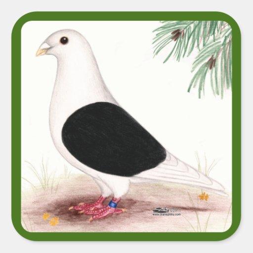 Saddle Homer Pigeon Square Sticker