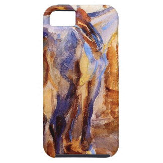 Saddle Horse, Palestine by John Singer Sargent iPhone SE/5/5s Case