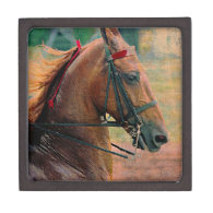 Saddlebred Faux Painting Premium Jewelry Boxes