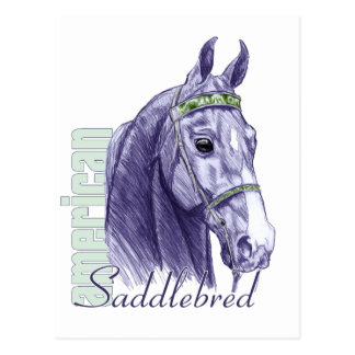 Saddlebred Head Study, Blue Post Cards