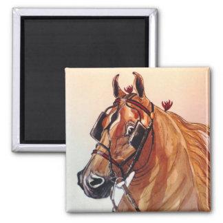 Saddlebred Horse Magnet