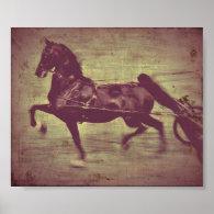 Saddlebred Song Posters