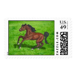 Saddlebred Stamps