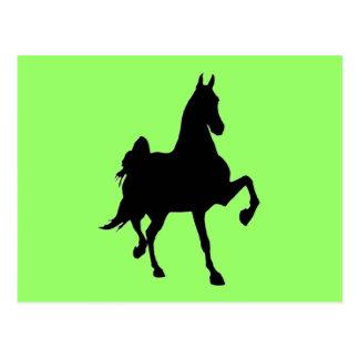 Saddlebreds Postcard