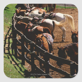 Saddled horses in corral square sticker