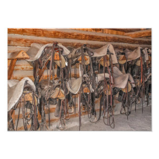 Saddles and Bridles Photo Print