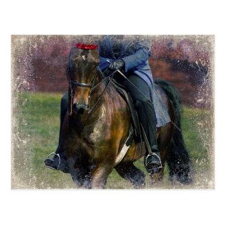 Saddleseat Tarjeta Postal
