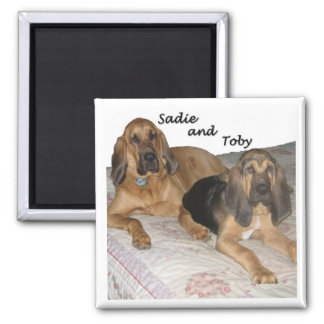 Sadie and Toby 1 2 Inch Square Magnet